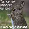 windandwater: (Bunny Says Dance Puppets) (Default)