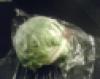 djkittycat: (iceberg lettuce)