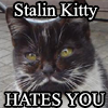rhaplanca: (Stalin Kitty HATES YOU)