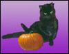 halva: (halloween)