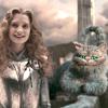 ofchessycats: (ᴀʟɪᴄᴇ ᴀɴᴅ ᴛʜᴇ ᴄʜᴇssʏ ᴄᴀᴛs)