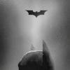 batfic: (i'm batman.) (Default)