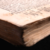 firstamong: (manuscript)