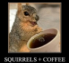 erg: (Squirrelly coffee zoom)