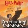 brumeux77: (reading)