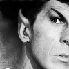 bristrek: A close up b/w of Spock with his eyebrow only slightly raised, curious (ST Spock curious)
