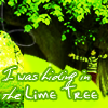 thelimetree: Lyrics from Lime Tree by Trevor Hall (Limetree)