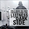 lil_rebbitzen: (l33tness of the dark side)