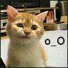 lil_rebbitzen: (o_O)