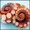 tentacles: (pic#173698)