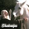ce_jour_la: (Tolkien || Gandalf & Shadowfax)