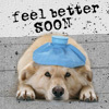 kalalanekent: (Love :: Get Better Soon)