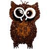 so_wa: (owlcoffee)