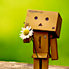 leeshajoy: (Danbo has a flower for you)