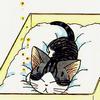 failaga: (Chii; Sleepy)