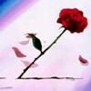 nephthysmoon: (Rose)