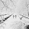 withherhands: (Winter - walking ina  winter wonderland)
