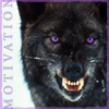 tempestuously: ([wolf] guardian, [wolf] how about a taste of my fangs?, [wolf] the beast inside)