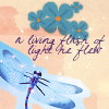 ozqueen: (misc: stock: dragonfly)
