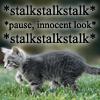 kitsune413: sneaky kitty (cat)