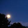 rising_moon: (moon)
