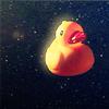 unnique: (duck in space)