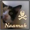 lizblackdog: (Naamah)