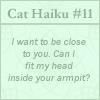 gelydh: (Cats   Haiku #11)