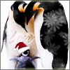 ranalore: (santa penguins are the best)