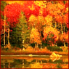 watersword: Fall foliage on the edge of a lake (Stock: autumn)