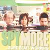 hominidae: (spy more)