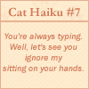 aikea_guinea: (Cat Haiku - Typing)