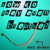 bacchus: (Sea Snakes)