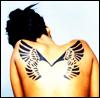 acadia: (placebo-wings, placebo)