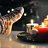 mrs: (holiday | SOCKS AND CANDLES)