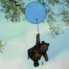 bkdelong: (pooh-cloud)