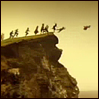 such_heights: children flying from a cliff (default [trufflehog])