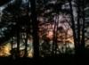 paidiraiompair: (sun set)