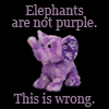 crazymule: elephants are not purple. this is wrong (Default)