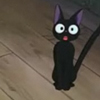 sar_cat_stic: (Wo~oah!)