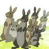 fiver: (bunnies bunnies bunnies)