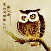 turps: (owl (turloughishere))
