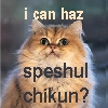 cat_lick_girl: (Crookshanks)