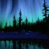 ritual: (aurora and trees)