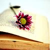 ninjafish: (Bookflower)