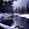 arcanise: (snow.trees.water)