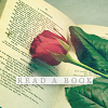 clare_dragonfly: A red rose laying on an open book, text: read a book (Reading: read a book)