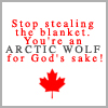 shanaqui: Quote from Due South. Text: stop stealing the blanket. You're an arctic wolf for God's sake! ((Fraser) Arctic wolf)