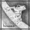 houses7177: Original artwork by Houses7177 (Houses Frog in Pencil)