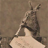 nomad: (Bunny)